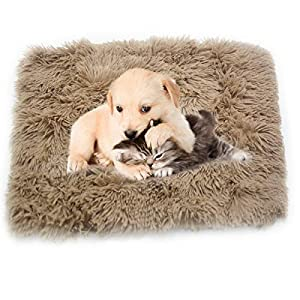1 Pack Puppy Dog Blankets,Faux Fur Pet Blanket Soft Flannel Throw Pet Mat for Cats Rabbits