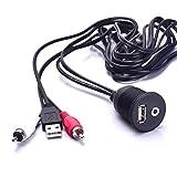 Cable de extensión para Coche, con USB y 2 Conectores RCA de 3,5 mm, Adaptador Aux, 1/8, para Radio, estéreo, Android, Wince GPS
