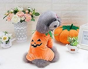 Slzzeu Chat Chien citrouille d'Halloween Costume Vêtements–Automne Hiver chaud Vêtements–Chaud pour petits chiens de taille moyenne