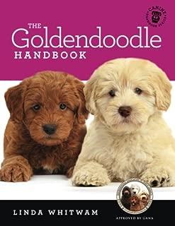 training mini goldendoodles