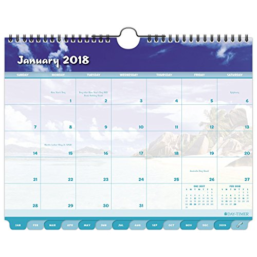 """Day-Timer Monthly Wall Calendar, Tabbed, January 2018 - December 2018, 11"""" x 8-1/2"""", Coastlines (11352-1801)"""