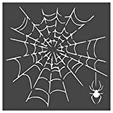 Spider Web Stencil 1-8x8 inch Custom Cut Reusable Stencil Drawing Template Flexible Clear Plastic Sheets 0.15mm Thick SL-1376