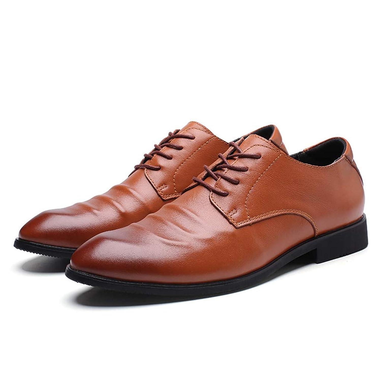 [PIRN] 紳士靴 大きいサイズ 革靴 消臭 高級レザー 営業マン 通気性 ファッション シューズ メンズ靴 衝撃吸収 就活 通勤 普段用 通気快適 足痛くない メンズ ビジネスシューズ 歩きやすい 男性用 ストレートチップ 足ムレ防止 レースアップ