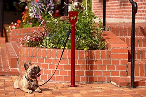 Betriebsausstattung24® Anleinpfosten für Hunde   Hunde-Parkplatz   Hundeanleinplatz   Zum Verschrauben   Rot   Stahl   Höhe: 90,0 cm