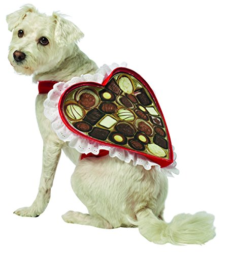 Rasta Imposta Chocolate Box Dog Costume