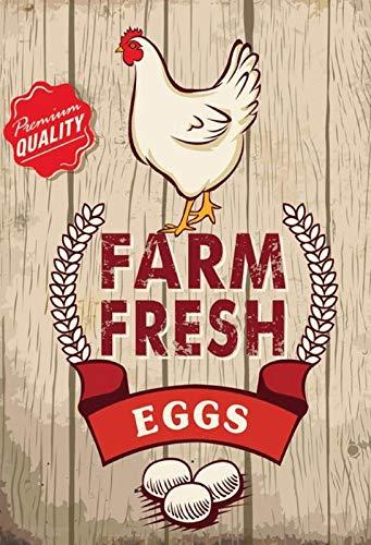 NWFS FS Reklame Farm Fresh Eggs metalen bord bord metalen plaat metaal tin teken gewelfd gelakt 20 x 30 cm