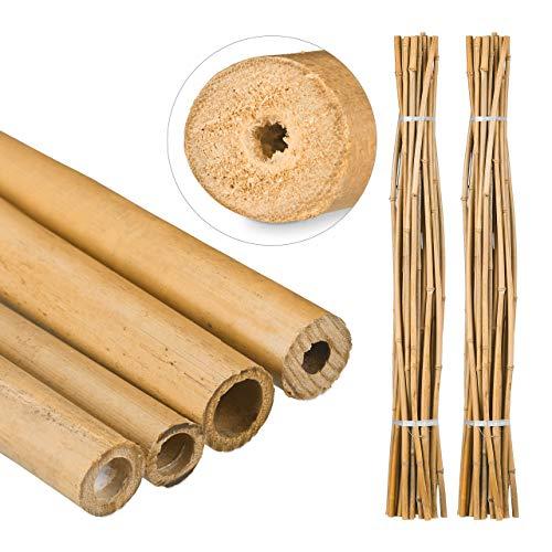 Relaxdays Bambusstäbe 150cm, aus natürlichem Bambus, Bambusstangen als Rankhilfe oder Deko, für Insekten, (50 Stück)