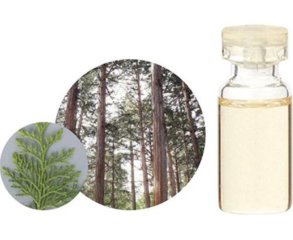 節約する深い破壊する生活の木 エッセンシャルオイル ヒノキ 10ml