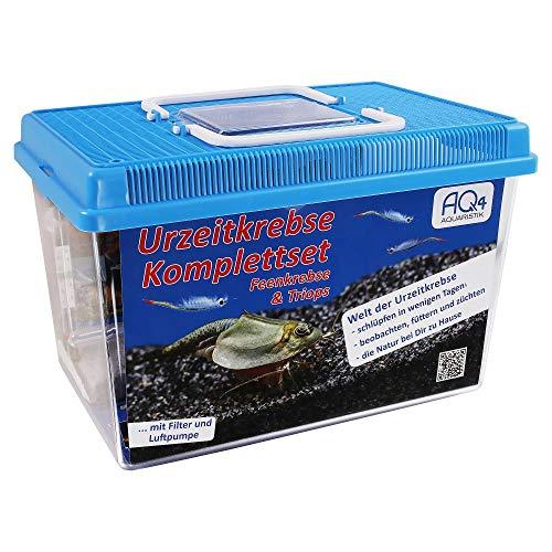 Premium Urzeitkrebse Komplettset mit Triops- und Feenkrebseiern: 6 Liter Aquarium mit LED-Beleuchtung, Luftpumpe, Filter, Kescher, Heizung, Zubehör, Zuchtansatz, Futter und Anleitung