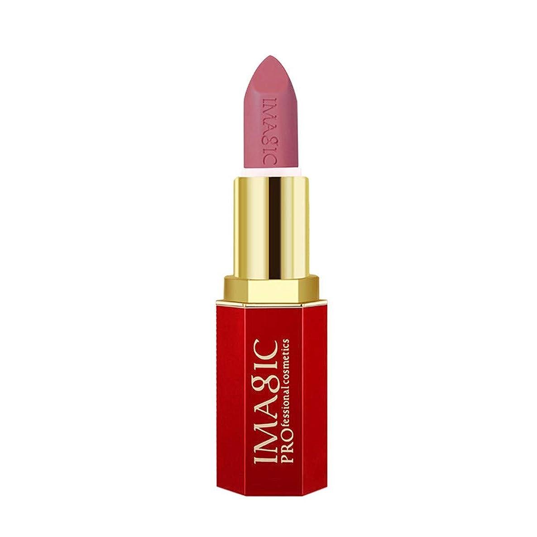 悪のブース苦黒い液体の口紅の保湿剤のビロードの金属の口紅の化粧品の美の構造