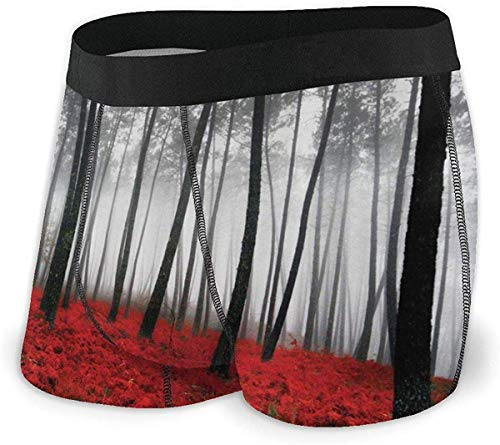 zengdou Mystical Red Woodland Unterwäsche für Herren Bequeme Boxershorts mit elastischem Bund Bequem