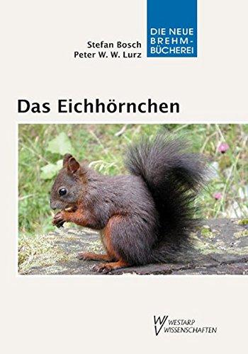 Das Eichhörnchen - Sciurus vulgaris