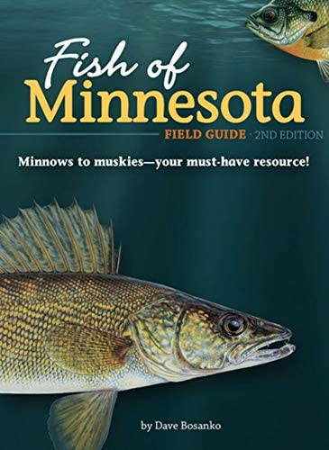Fish of Minnesota Field Guide Fish Identification Guides product image
