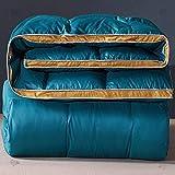 CHOU DAN edredones Cama 90 Infantil,Twin Duvet Insert,Twin Duvet Comfortable Down Alternative Quilt-White Quilt Insert Type, Hypoallergenic and Breathable 220x240 3000g
