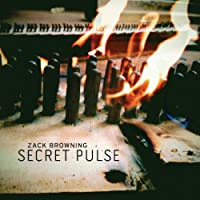 Secret Pulse
