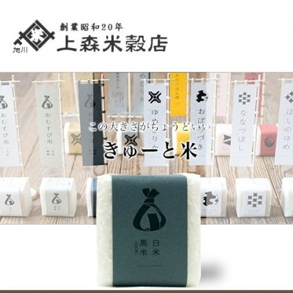 旭川 上森米穀店 きゅーと米 おむすび用 白米黒米