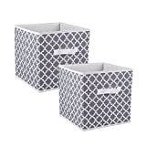 DII CAMZ38463 Foldable Fabric Storage Containers (Set of 2), Large S/2, Gray