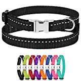 CollarDirect Small Dog Collar Nylon Reflective Puppy...