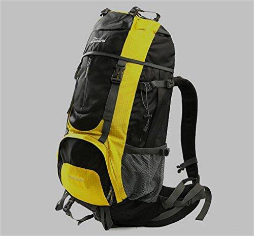 sac à dos randonnée le camping Outdoor package d'alpinisme professionnel 60L grande capacité ours sac à dos Sacs à dos de randonnée ( Couleur : Le jaune , taille : 60 l )