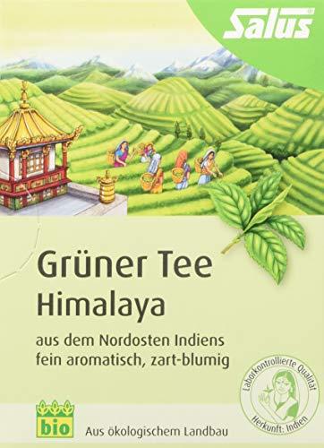 Salus Grüner Tee Himalaya (15 Filter Beutel = 24g) BIO, 3er Pack (3 x 24 g)