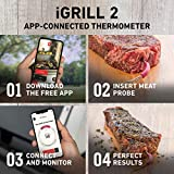 Weber iGrill 2 Thermometer