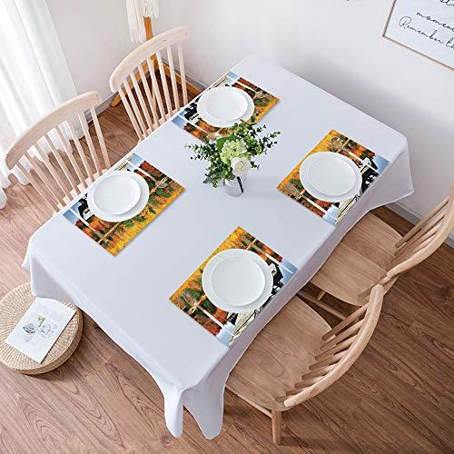 Lot de 4 Sets de Table,Facile à Nettoyer,Paysage, chaises sur un quai en bois vibrer couleur auto,Lavable Napperons pour Cuisine ou pour Table à Manger Résiste à la Chaleur Antidérapant Fait (30x45cm)