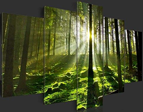 SENSATIONSPREIS ! Bilder 200×100 cm – Wasserfester Leinwanddruck ! XXL Format – Fertig Aufgespannt TOP Vlies Leinwand Wandbild 5 Teilig Landschaft Wald 030213-32 200×100 cm B&D XXL - 6
