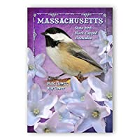 MASSACHUSETTS BIRD AND FLOWER postcard set of 20 identical postcards. MA state symbols post cards. Made in USA. [並行輸入品]