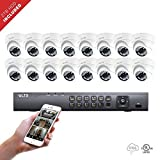 16 Channel LTS DVR + (16) x Platinum HD-TVI 2.1 Megaixel Turret Camera + 2TB HDD Package