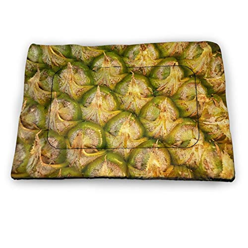 Small Dog Bed & Cat Bed Novely Texture Pineapple Yellow Gold Pet Beds for Indoor Kitten Kitty Puppies Sleeping, Dog Crate Kennel Mats Mattress Cushion, Washable Soft Pet Supplies, Non Slip Bottom