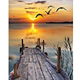Adult Diamond Painting kit,Diamond Painting Sunset Beach Boardwalk Seabird Sea By Number Kits Painting Cross Stitch Full Drill Crystal Rhinestone Embroidery Pictures Arts Craft for Home Wall Decor Gift Mitikko (11.8X15.7 In)