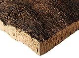 Corcho corteza | placa, trozos de corcho natural de la madera de corcho | 30x40x3 cm | sin tratar y natural | mercancía de la corteza de corcho |desinfectada térmicamente