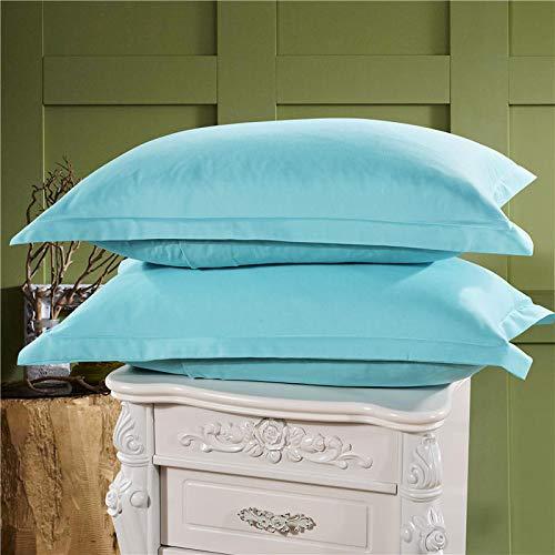Leileixiao 2 fundas de almohada tamaño Queen 100% microfibra cepillada ultra suave (color: azul claro)