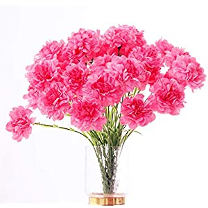 20 inch Bouquets 10 Stem Rainbow Carnations,Outdoor UV Resistant No Fade Artificial Flower,Carnation Silk Petals Fake Flowers Forever Plants for Photo Props Home Party and Wedding Decor (Pink)