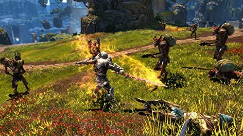 516FF2 WVbL - Kingdoms of Amalur Re-Reckoning - PlayStation 4 Standard Edition