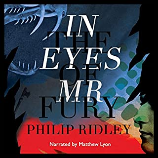 In the Eyes of Mr Fury audiobook cover art