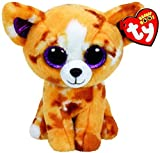 TY Beanie Boos BUDDY Pablo The Chihuahua - 9