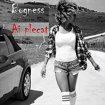 Ai Plecat (feat. George Hora)