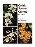 Dendrobium (Orchard Species Culture)