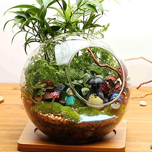 HO-TBO Plante terrarium en forme de boule DIY Moss Micro paysage Bouteille en verre à double trous Vase pour plantes succulentes Décoration d'intérieur Transparent Serre Travail de jardinage (couleur : transparent, Taille unique