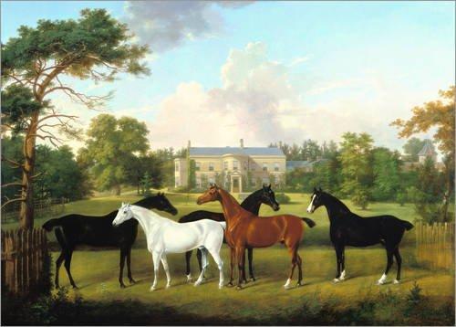 Leinwandbild 100 x 70 cm: Fünf Rennpferde vor einem englischen Landhaus. von Frederick W. zugeschr Keyl / ARTOTHEK - fertiges Wandbild, Bild auf Keilrahmen, Fertigbild auf echter Leinwand, Leinwand...
