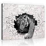 FORWALL Bilder Canvas 3D Tiger kommt aus der Wand O1