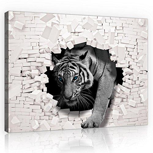 FORWALL Bilder Canvas 3D Tiger kommt aus der Wand O1 (100cm. x 75cm.) Leinwandbilder Wandbild AMFPP10400O1
