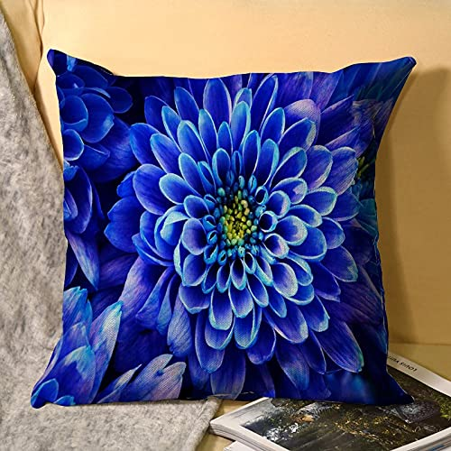 best & Blue Aster - Funda de almohada de lino (1 paquete, tamaño estándar (45 x 45 cm), funda de almohada con bordado y lino natural