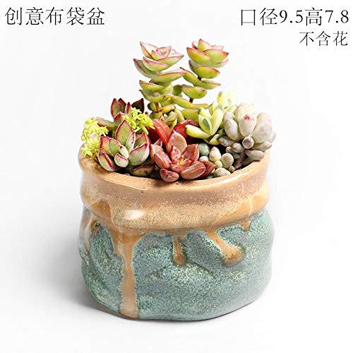 Grote kaliber vlezige hoge sappige klif kleine oude stapel groene plant bloempot keramische landschapsarchitectuur potplant Small pouch