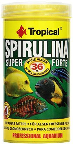 Tropical Super Spirulina Forte (36%) vlokkenvoer, per stuk verpakt (1 x 250 ml)