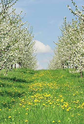 Flores de Primavera césped Verde césped Bosque jardín Fondos para fotografía niño Ducha Foto telón de Fondo Estudio fotográfico A4 5x3 pies / 1,5x1 m