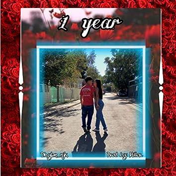 1 Year