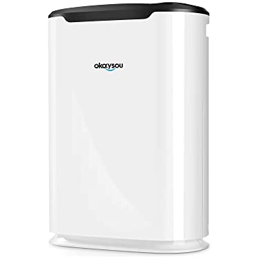 Okaysou AirMax8L Air Purifiers with Ultra-Duo Two Filters, Medical Grade H13 HEPA for Home Allergies Pets Hair Smokers Odors, Remove 99.97% Mold Dust Pollen VOCs for Large Room, Bedroom,500 Sq. Ft
