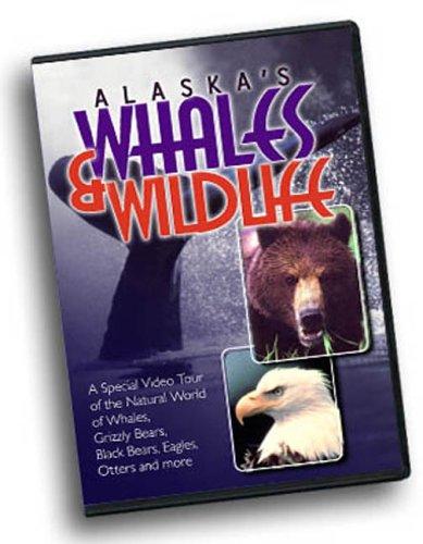 Alaska's Whales & Wildlife